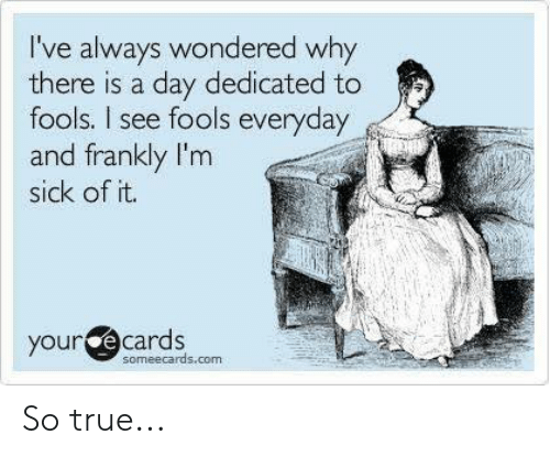 Dank, True, and Someecards: I've always wondered why  there is a day dedicated to  fools. I see fools everyday  and frankly I'm  sick of it.  your  e cards  someecards.com So true...