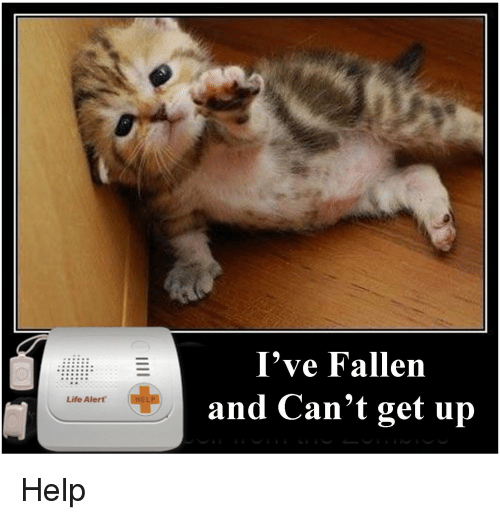 25 best memes about ive fallen and cant get up ive fallen