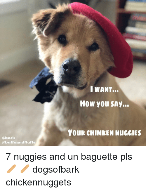 Memes, 🤖, and How: IWANT.  HOw You SAY..  YOUR CHIMKEN NUGGIES  abark  @buffsandfluffs 7 nuggies and un baguette pls 🥖 🥖 dogsofbark chickennuggets