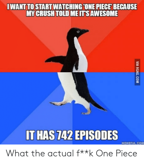 Crush, One Piece, and Awesome: IWANT TO STARTWATCHINGCONE PIECE BECAUSE  MY CRUSH TOLD ME ITS AWESOME  T HAS 742 EPISODES  MEMEFUL.COM What the actual f**k One Piece