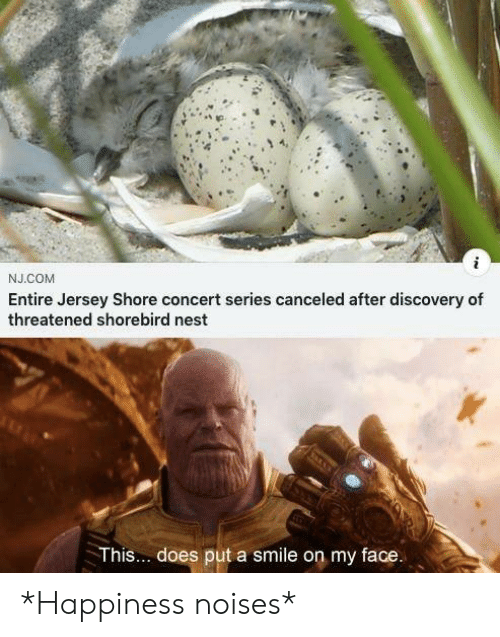 Nest: J.COM  Entire Jersey Shore concert series canceled after discovery of  threatened shorebird nest  This... does put a smile on my face. *Happiness noises*