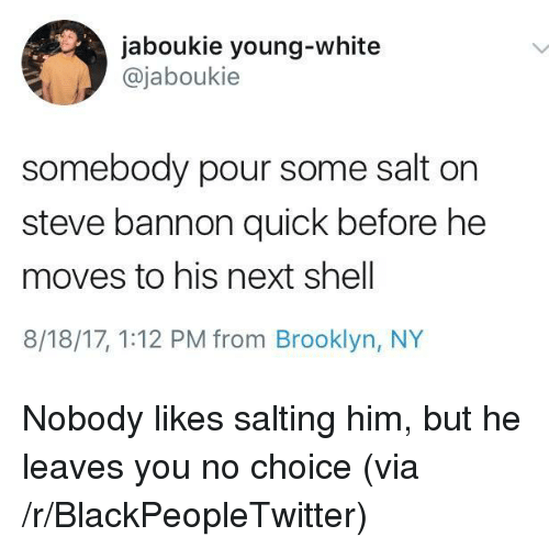 Salting: jaboukie young-white  @jaboukie  somebody pour some salt on  steve bannon quick before he  moves to his next shell  8/18/17, 1:12 PM from Brooklyn, NY <p>Nobody likes salting him, but he leaves you no choice (via /r/BlackPeopleTwitter)</p>