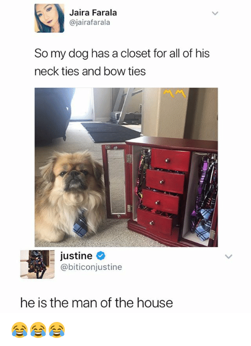 Justine: Jaira Farala  @jairafarala  So my dog has a closet for all of his  neck ties and bow ties  -Justine e  @biticonjustine  he is the man of the house 😂😂😂