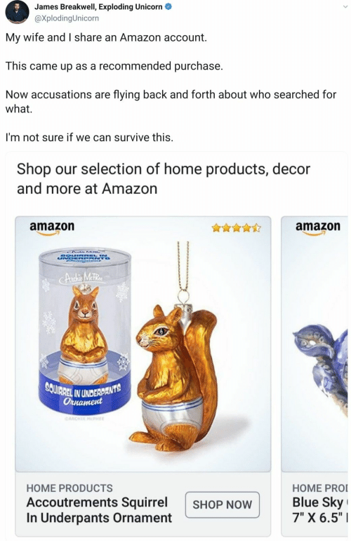 "Amazon, Blue, and Home: James Breakwell, Exploding Unicorn  @XplodingUnicorn  My wife and I share an Amazon account  This came up as a recommended purchase.  Now accusations are flying back and forth about who searched for  what  I'm not sure if we can survive this.  Shop our selection of home products, decor  and more at Amazon  amazon  amazon  DOUIRREL N  UNDR NTO  CAnchie Meter  SOUIRREL IN UNDERDANTS  Ornament  CARCHIE MCPHEE  HOME PRO  Blue Sky  7"" X 6.5""  HOME PRODUCTS  Accoutrements Squirrel  In Underpants Ornament  SHOP NOW"