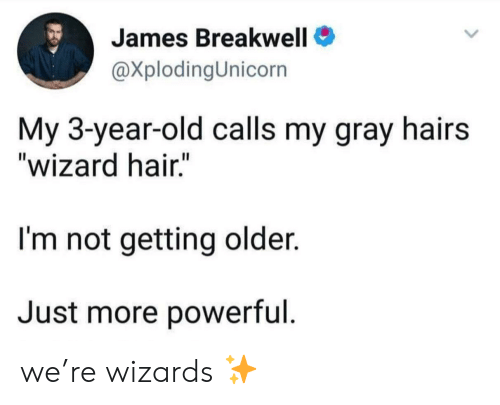 "Hair, Wizards, and Old: James Breakwell  @XplodingUnicorn  My 3-year-old calls my gray hairs  ""wizard hair.""  I'm not getting older.  Just more powerful we're wizards ✨"