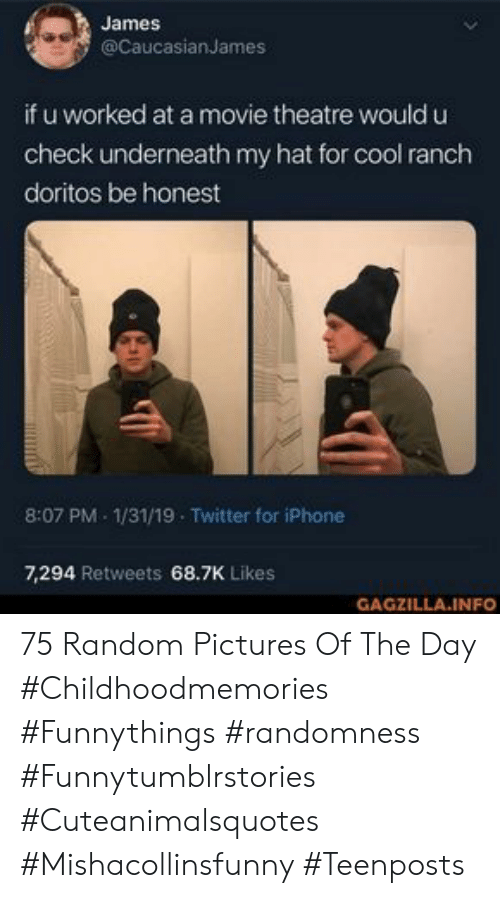 randomness: James  @CaucasianJames  if u worked at a movie theatre would u  check underneath my hat for cool ranch  doritos be honest  8:07 PM 1/31/19 Twitter for iPhone  7,294 Retweets 68.7K Likes  GAGZILLA.INFO 75 Random Pictures Of The Day #Childhoodmemories #Funnythings #randomness #Funnytumblrstories #Cuteanimalsquotes #Mishacollinsfunny #Teenposts