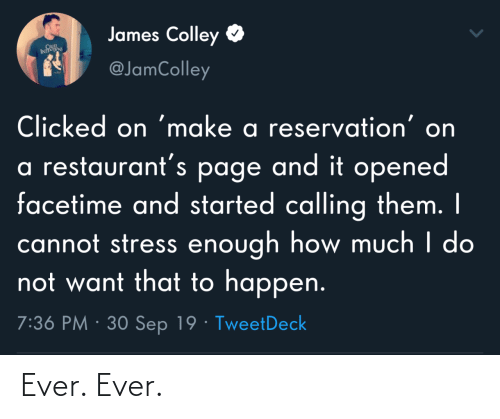 Restaurants: James Colley  CRUL  INTS  @JamColley  Clicked on 'make a reservation' on  a restaurant's page and it opened  facetime and started calling them. I  cannot stress enough how much I do  not want that to happen.  7:36 PM · 30 Sep 19 · TweetDeck Ever. Ever.