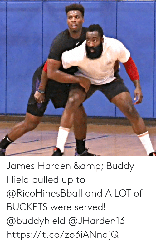 buckets: James Harden & Buddy Hield pulled up to @RicoHinesBball and A LOT of BUCKETS were served! @buddyhield @JHarden13 https://t.co/zo3iANnqjQ