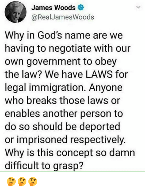 respectively: James Woods  @RealJamesWoods  Why in God's name are we  having to negotiate with our  own government to obey  the law? We have LAWS for  legal immigration. Anyone  who breaks those laws or  enables another person to  do so should be deported  or imprisoned respectively.  Why is this concept so damn  difficult to grasp? 🤔🤔🤔