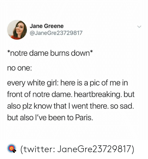 Twitter, White Girl, and Girl: Jane Greene  @JaneGre23729817  *notre dame burns down*  no one:  every white girl: here is a pic of me in  front of notre dame. heartbreaking. but  also plz know that I went there. so sad.  but also l've been to Paris. 🎯 (twitter: JaneGre23729817)