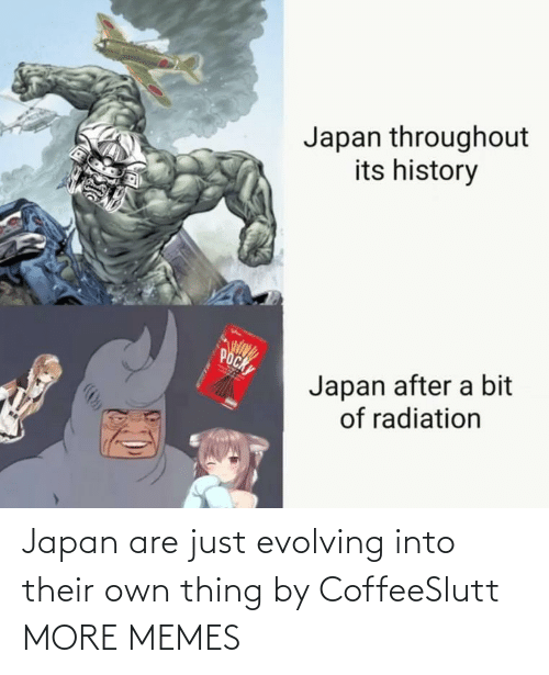 evolving: Japan throughout  its history  POCK  Japan after a bit  of radiation Japan are just evolving into their own thing by CoffeeSlutt MORE MEMES