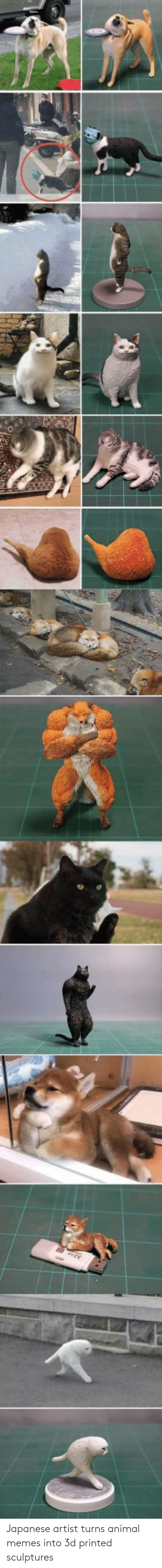 Animal Memes: Japanese artist turns animal memes into 3d printed sculptures