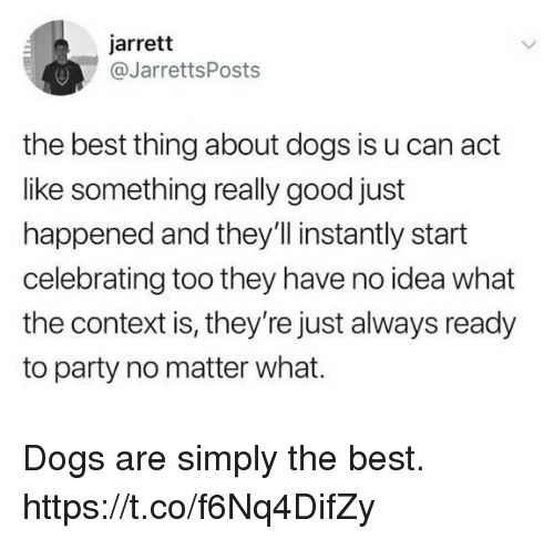 Dogs, Funny, and Party: jarrett  @JarrettsPosts  the best thing about dogs is u can act  like something really good just  happened and they'll instantly start  celebrating too they have no idea what  the context is, they're just always ready  to party no matter what. Dogs are simply the best. https://t.co/f6Nq4DifZy
