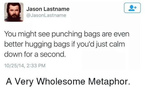 Metaphor, Wholesome, and Jason: Jason Lastname  @JasonLastname  You might see punching bags are even  better hugging bags if you'd just calm  down for a second  10/25/14, 2:33 PM A Very Wholesome Metaphor.