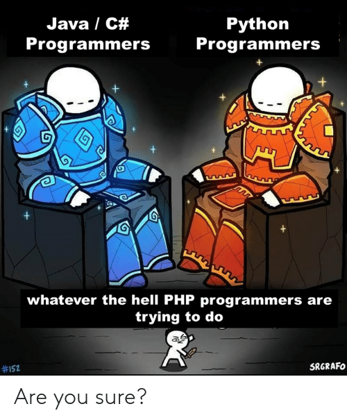 Trying To Do: Java / C#  Python  Programmers  Programmers  +  +  whatever the hell PHP programmers are  trying to do  SRGRAFO  Are you sure?