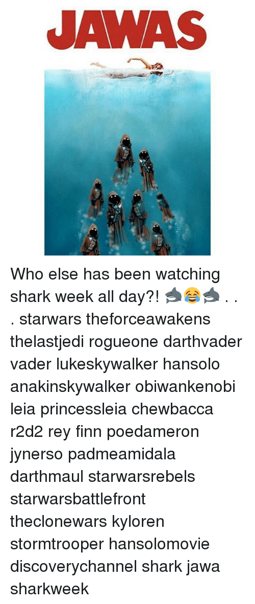 Chewbacca, Finn, and Memes: JAWAS Who else has been watching shark week all day?! 🦈😂🦈 . . . starwars theforceawakens thelastjedi rogueone darthvader vader lukeskywalker hansolo anakinskywalker obiwankenobi leia princessleia chewbacca r2d2 rey finn poedameron jynerso padmeamidala darthmaul starwarsrebels starwarsbattlefront theclonewars kyloren stormtrooper hansolomovie discoverychannel shark jawa sharkweek