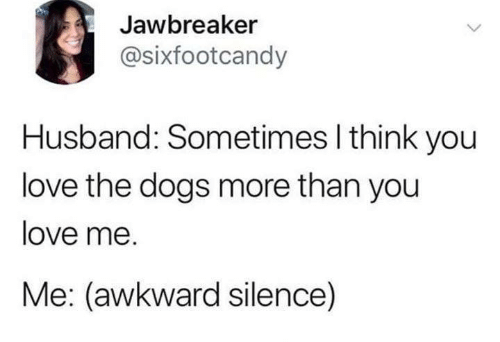 Dogs, Love, and Awkward: Jawbreaker  @sixfootcandy  Husband: Sometimes I think you  love the dogs more than you  love me.  Me: (awkward silence)