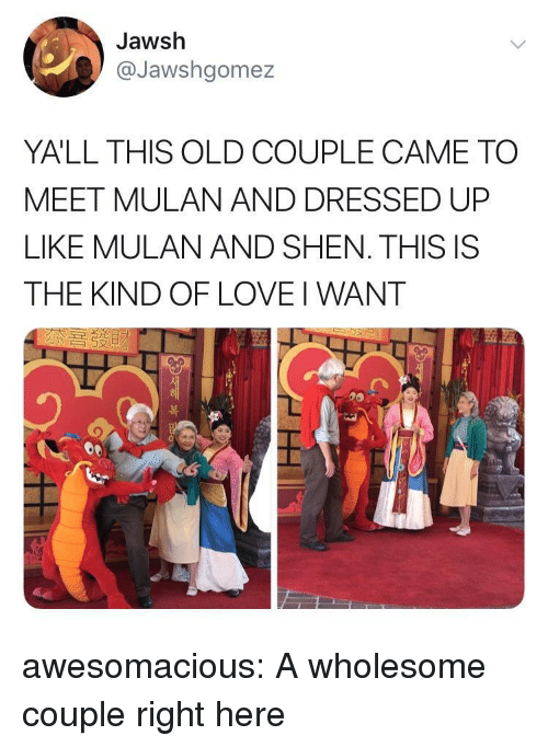 Mulan: Jawsh  @Jawshgomez  YALL THIS OLD COUPLE CAME TO  MEET MULAN AND DRESSED UP  LIKE MULAN AND SHEN. THIS IS  THE KIND OF LOVE I WANT  つ  )  복 awesomacious:  A wholesome couple right here