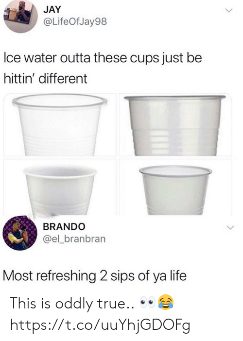 sips: JAY  @LifeOfJay98  lce water outta these cups just be  hittin' different  BRANDO  @el_branbran  Most refreshing 2 sips of ya life This is oddly true.. 👀😂 https://t.co/uuYhjGDOFg