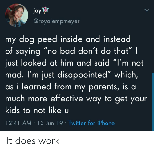 "Bad, Disappointed, and Iphone: jay  @royalempmeyer  my dog peed inside and instead  of saying ""r  just looked at him and said ""I'm not  mad. I'm just disappointed"" which,  as i learned from my parents, is al  much more effective way to get your  bad don't do that"" 
