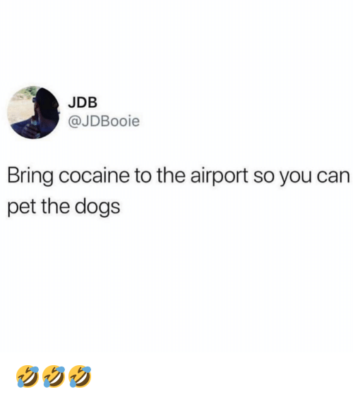 Dogs, Ironic, and Cocaine: JDB  @JDBooie  Bring cocaine to the airport so you can  pet the dogs 🤣🤣🤣
