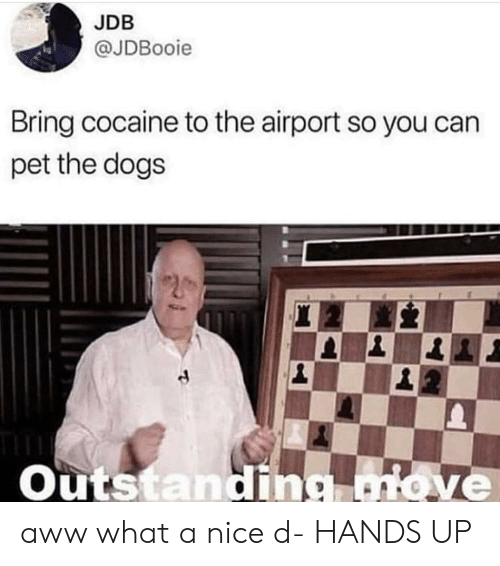 Aww, Dogs, and Cocaine: JDB  @JDBooie  Bring cocaine to the airport so you can  pet the dogs  Outstanding aww what a nice d- HANDS UP