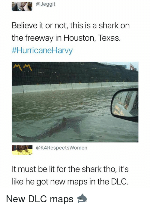 Lit, Shark, and Houston: @Jeggit  Believe it or not, this is a shark on  the freeway in Houston, Texas.  #HurricaneHarvy  @K4RespectsWomen  It must be lit for the shark tho, it's  like he got new maps in the DLO. New DLC maps 🦈