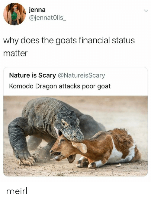 Goat, Nature, and MeIRL: jenna  @jennatOlls  why does the goats financial status  matter  Nature is Scary @NatureisScary  Komodo Dragon attacks poor goat meirl