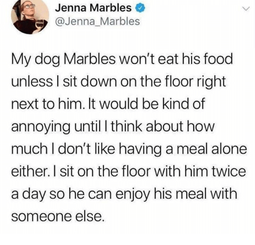 Being Alone, Dank, and Food: Jenna Marbles  @Jenna_Marbles  My dog Marbles won't eat his food  unless I sit down on the floor right  next to him. It would be kind of  annoying until I think about how  much I don't like having a meal alone  either. I sit on the floor with him twice  a day so he can enjoy his meal with  someone else