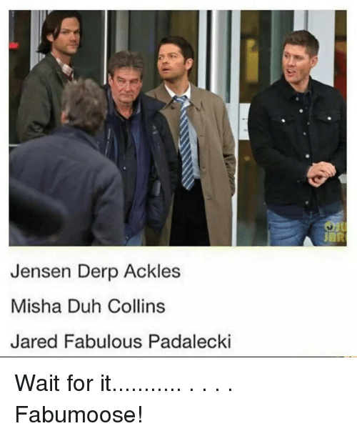 Memes, 🤖, and Fabulous: Jensen Derp Ackles  Misha Duh Collins  Jared Fabulous Padalecki Wait for it........... . . . . Fabumoose!