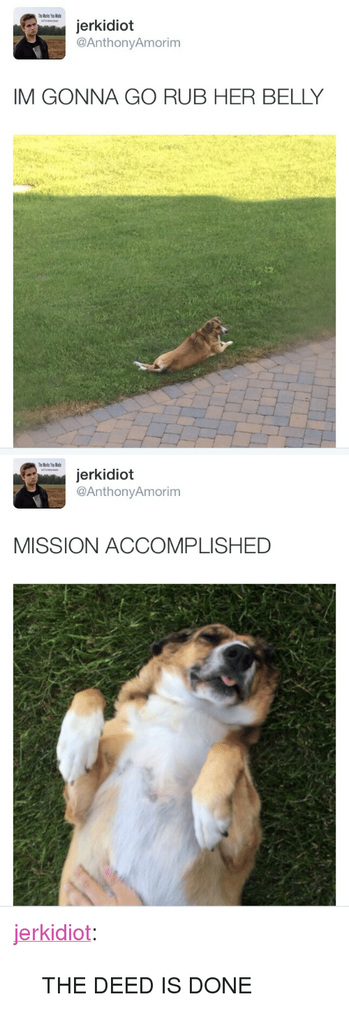 "Tumblr, Blog, and Http: jerkidiot  @AnthonyAmorim  IM GONNA GO RUB HER BELLY   jerkidiot  @AnthonyAmorim  MISSION ACCOMPLISHED <p><a href=""http://jerkidiot.com/post/87334518573/the-deed-is-done"" class=""tumblr_blog"">jerkidiot</a>:</p><blockquote><p>THE DEED IS DONE</p></blockquote>"