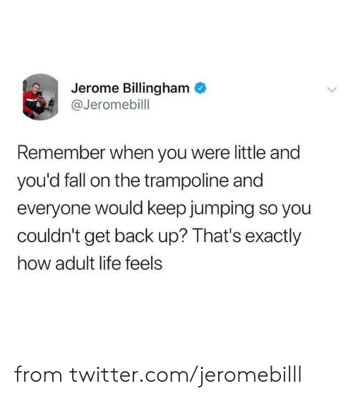 Adult Life: Jerome Billingham  @Jeromebill  Remember when you were little and  you'd fall on the trampoline and  everyone would keep jumping so you  couldn't get back up? That's exactly  how adult life feels from twitter.com/jeromebilll