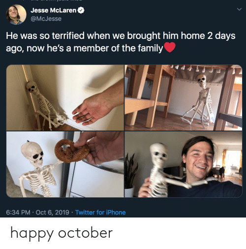 jesse: Jesse McLaren  @McJesse  He was so terrified when we brought him home 2 days  ago, now he's a member of the family  6:34 PM Oct 6, 2019 Twitter for iPhone  Tooses happy october