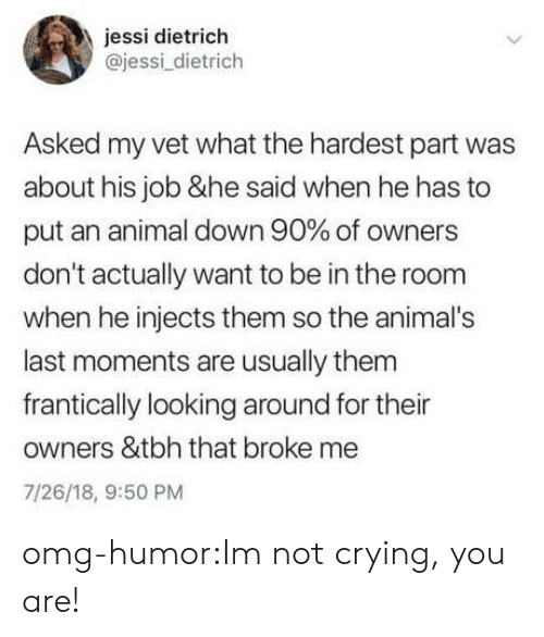 Jessi: jessi dietrich  @jessi_dietrich  Asked my vet what the hardest part was  about his job &he said when he has to  put an animal down 90% of owners  don't actually want to be in the room  when he injects them so the animal's  last moments are usually them  frantically looking around for their  owners &tbh that broke me  7/26/18, 9:50 PM omg-humor:Im not crying, you are!