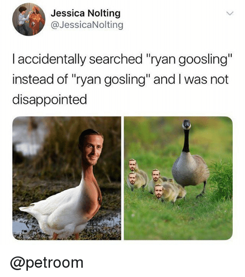 "Ryan Gosling: Jessica Nolting  @JessicaNolting  I accidentally searched ""ryan goosling""  instead of ""ryan gosling"" and I was not  disappointed @petroom"