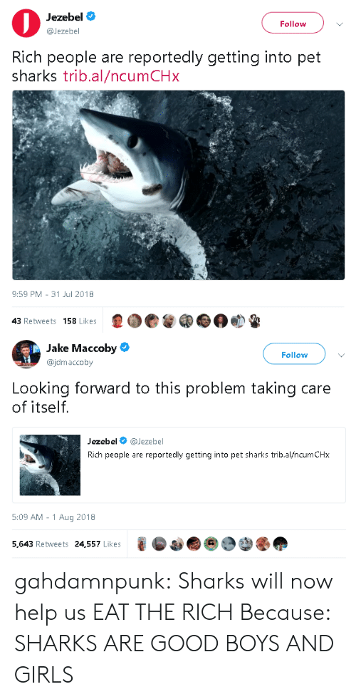 Girls, Tumblr, and Blog: Jezebel  @Jezebel  Follow  Rich people are reportedly getting into pet  sharks trib.al/ncumCHx  9:59 PM- 31 Jul 2018  43 Retweets 158 Likes   Jake Maccoby  @jdmaccoby  Follow  Looking forward to this problem taking care  of itself.  Jezebel @Jezebel  Rich people are reportedly getting into pet sharks trib.al/ncumCHx  5:09 AM -1 Aug 2018  5,643 Retweets 24,557 Likes gahdamnpunk:  Sharks will now help us EAT THE RICH  Because: SHARKS ARE GOOD BOYS AND GIRLS