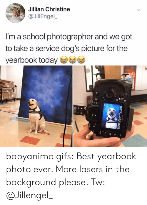 christine: Jillian Christine  @JillEngel,  I'm a school photographer and we got  to take a service dog's picture for the  yearbook today babyanimalgifs: Best yearbook photo ever. More lasers in the background please. Tw: @Jillengel_