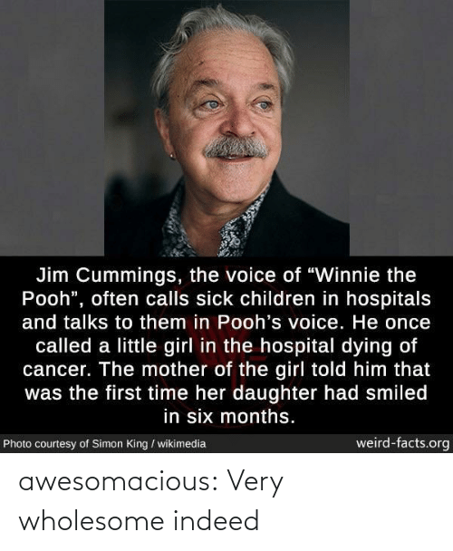 "Children, Facts, and The Voice: Jim Cummings, the voice of ""Winnie the  Pooh"", often calls sick children in hospitals  and talks to them in Pooh's voice. He once  called a little girl in the hospital dying of  cancer. The mother of the girl told him that  was the first time her daughter had smiled  in six months.  weird-facts.org  Photo courtesy of Simon King / wikimedia awesomacious:  Very wholesome indeed"