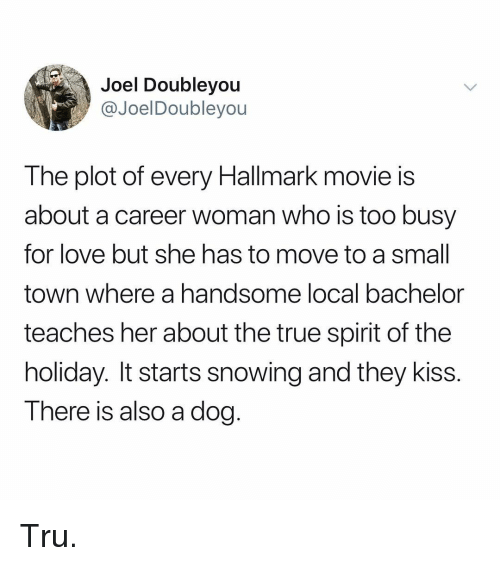 Love, Memes, and True: Joel Doubleyou  @JoelDoubleyou  The plot of every Hallmark movie is  about a career woman who is too busy  for love but she has to move to a small  town where a handsome local bachelor  teaches her about the true spirit of the  holiday. It starts snowing and they kiss.  There is also a dog. Tru.