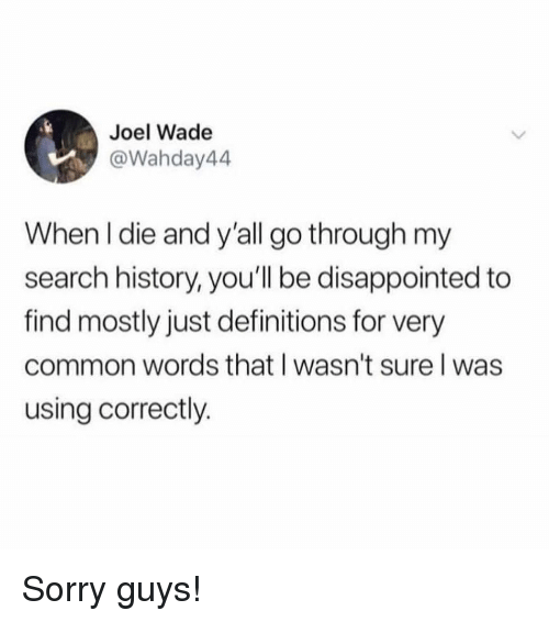 Disappointed, Memes, and Sorry: Joel Wade  @Wahday44  When l die and y'all go through my  search history, you'll be disappointed to  find mostly just definitions for very  common words that I wasn't sure l was  using correctly. Sorry guys!