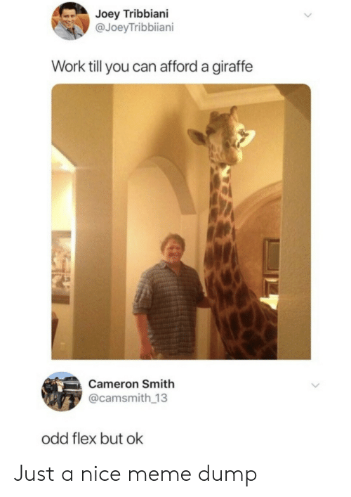Flexing, Joey Tribbiani, and Meme: Joey Tribbiani  @JoeyTribbiiani  Work till you can afford a giraffe  Cameron Smith  @camsmith 13  odd flex but ok Just a nice meme dump