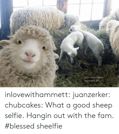 fam: John Churchman  Copyright 2015 inlovewithammett:  juanzerker:   chubcakes: What a good sheep selfie.  Hangin out with the fam. #blessed   sheelfie