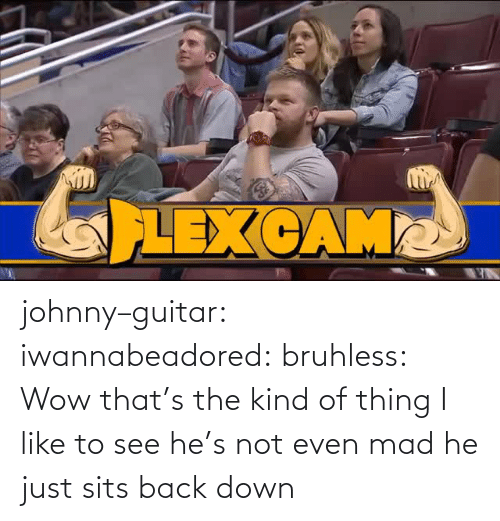 Sits: johnny–guitar: iwannabeadored:  bruhless:  Wow  that's the kind of thing I like to see   he's not even mad he just sits back down