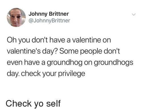 Valentine's Day, Yo, and Groundhog: Johnny Brittner  @JohnnyBrittner  Oh you don't have a valentine on  valentine's day? Some people don't  even have a groundhog on groundhogs  day. check your privilege Check yo self