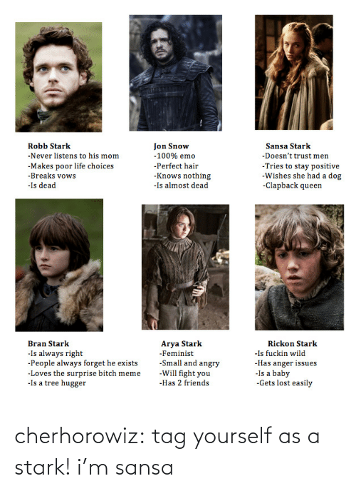Emo, Friends, and Life: Jon Snow  Robb Stark  Sansa Stark  -Never listens to his mom  -100% emo  -Doesn't trust men  -Tries to stay positive  -Wishes she had a dog  -Clapback queen  -Makes poor life choices  -Breaks vows  -Perfect hair  -Knows nothing  -Is almost dead  -Is dead  Arya Stark  Bran Stark  Rickon Stark  -Is fuckin wild  -Has anger issues  -Is a baby  -Gets lost easily  -Is always right  -People always forget he exists  -Loves the surprise bitch meme  -Is a tree hugger  -Feminist  -Small and angry  -Will fight you  -Has 2 friends cherhorowiz:  tag yourself as a stark! i'm sansa