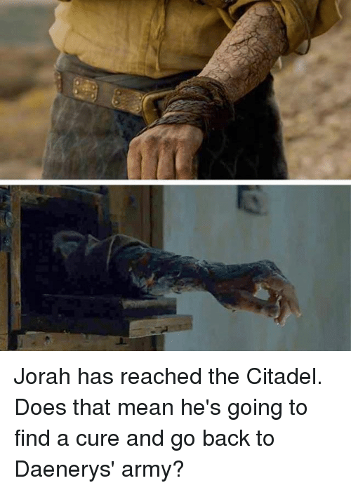 Thats Mean: Jorah has reached the Citadel. Does that mean he's going to find a cure and go back to Daenerys' army?