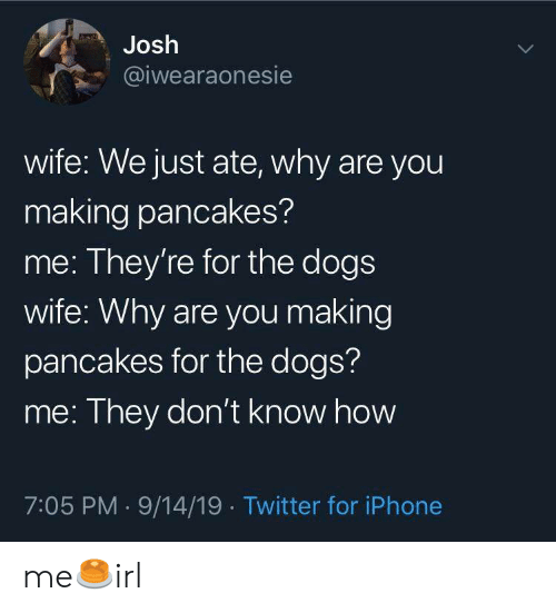 Dogs, Iphone, and Twitter: Josh  @iwearaonesie  wife: We just ate, why are you  making pancakes?  me: They're for the dogs  wife: Why are you making  pancakes for the dogs?  me: They don't know how  7:05 PM 9/14/19 Twitter for iPhone me🥞irl
