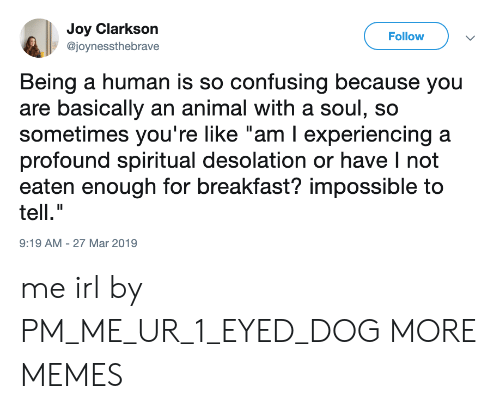 "Dank, Memes, and Target: Joy Clarkson  @joynessthebrave  Follow  Being a human is so confusing because you  are basically an animal with a soul, so  sometimes you're like ""am I experiencing a  profound spiritual desolation or have I not  eaten enough for breakfast? impossible to  tell.""  9:19 AM-27 Mar 2019 me irl by PM_ME_UR_1_EYED_DOG MORE MEMES"