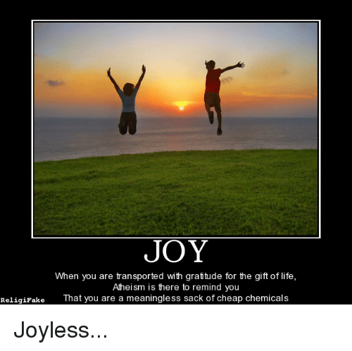 Joy When You Are Transported With Gratitude For The Gift Of Life