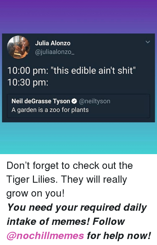 """Memes, Neil deGrasse Tyson, and Shit: Julia Alonzo  @juliaalonzo_  10:00 pm: """"this edible ain't shit""""  10:30 pm:  Neil deGrasse Tyson@neiltyson  A garden is a zoo for plants <p>Don't forget to check out the Tiger Lilies. They will really grow on you!</p><p><b><i>You need your required daily intake of memes! Follow <a>@nochillmemes</a> for help now!</i></b><br/></p>"""